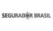 Segurador Brasil - Sites para Corretores